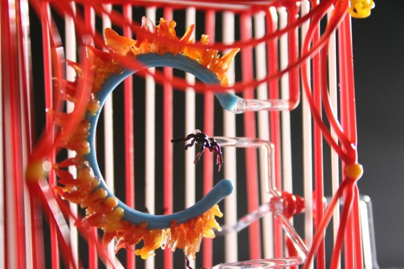 Flea Circus Detail